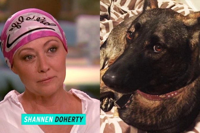 Best Friend, Indeed! Shannen Doherty Says Her Dog Detected Her Cancer First