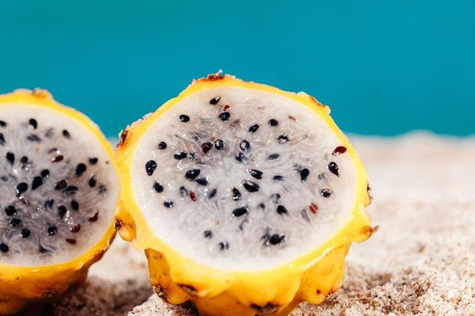What Are the Benefits of Cactus Fruit? | LIVESTRONG.COM - photo#28