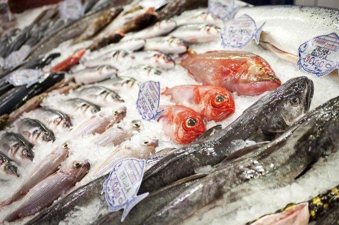 6 Jenis Ikan Yang Baik Untuk Diet Sehat dan Belum Banyak Diketahui Manfaatnya