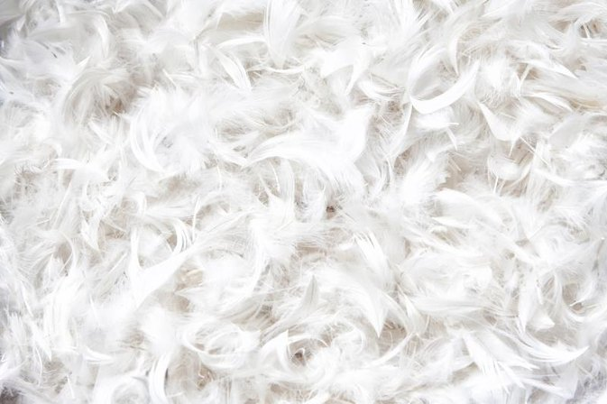 Allergies From Feather Pillows Livestrong Com