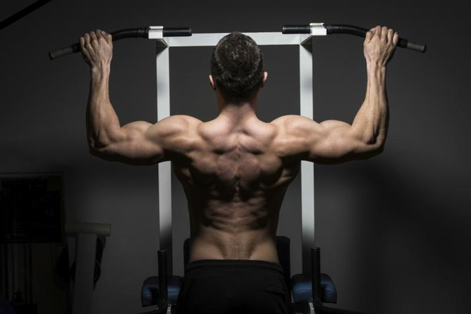Back Compound Exercises