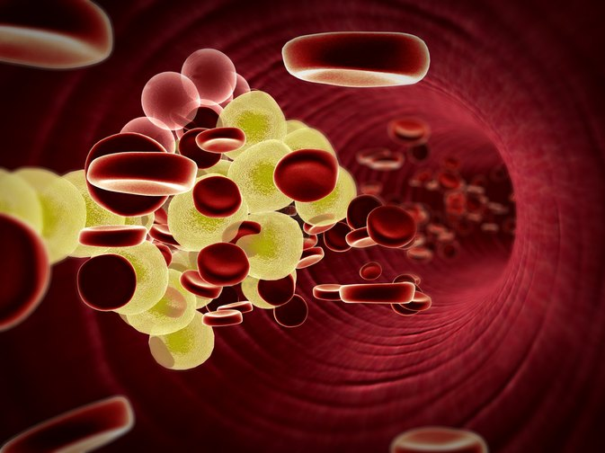 Why Does Cholesterol Lower Membrane Permeability?