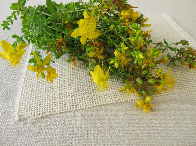 Valerian & St John's Wort for Anxiety