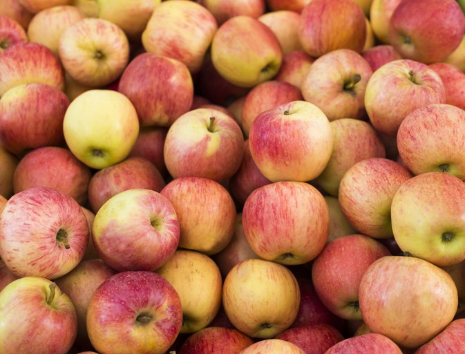 Digestive Benefits of Apples