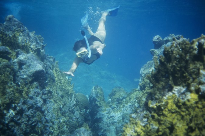 Snorkeling in Fort Meyers