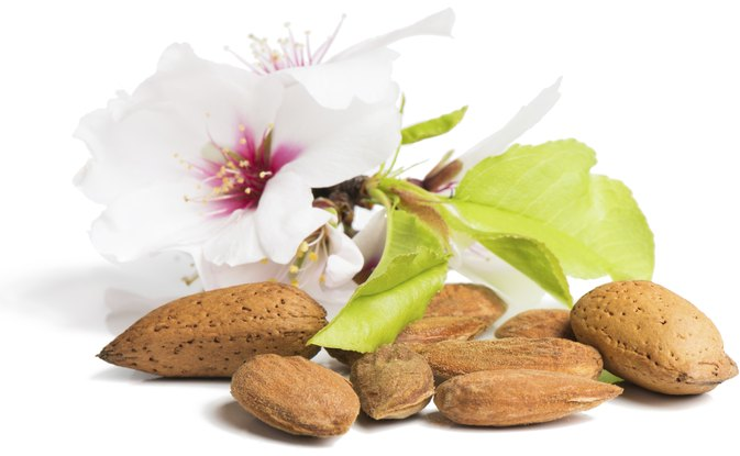 How Much L-Arginine Is Found in Nuts?