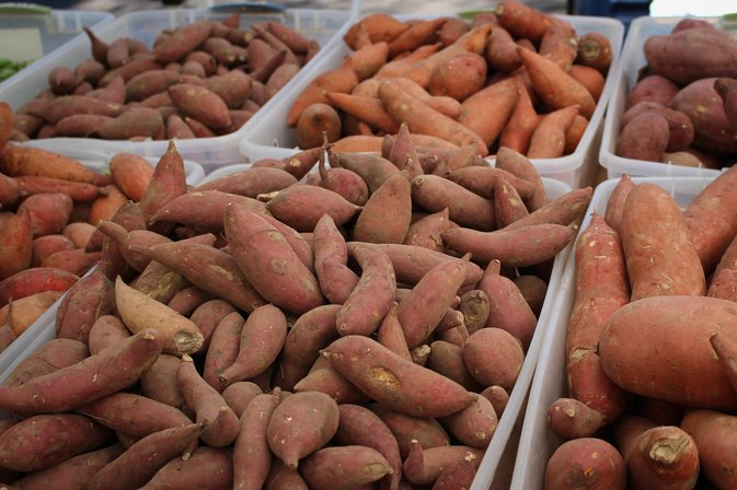 Yams for Progesterone