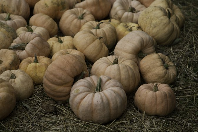 How to Cook Fairytale Pumpkin Squash