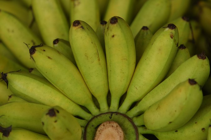 Are Green Bananas Better for You?