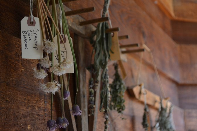 How to Dry Chives & Herbs