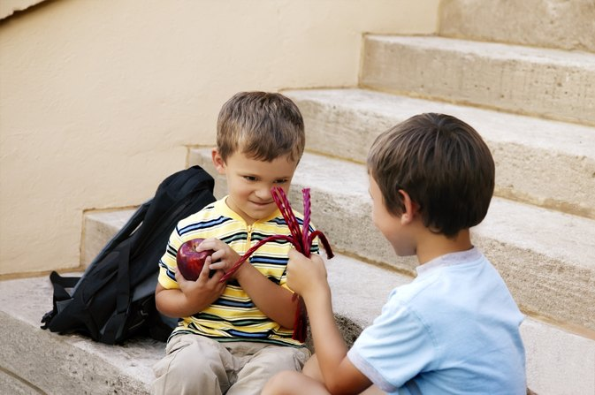 The Effects of Junk Food on Bad Behavior in Children