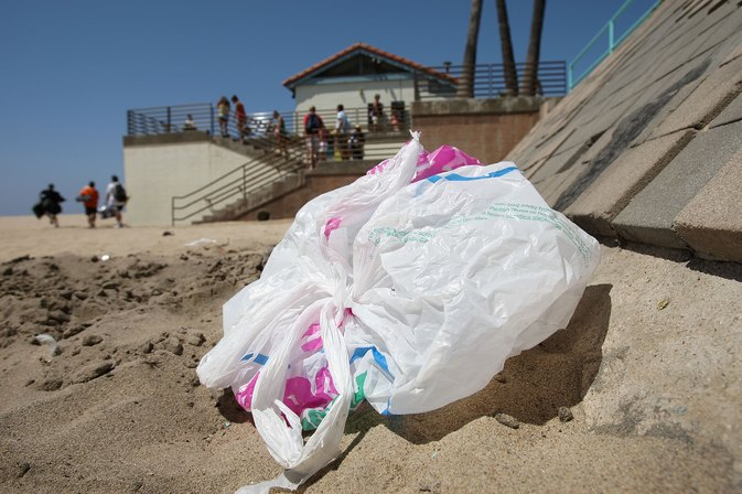 Why Are Plastic Bags So Bad for the Environment?