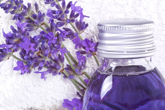 Lavender Oil as a Bug Repellent