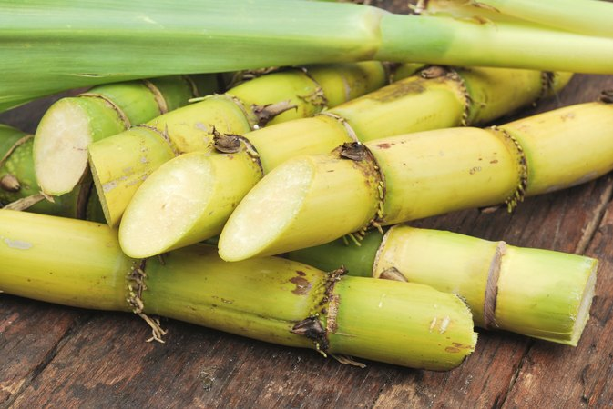 Side Effects of Sugar Cane Extract