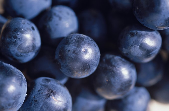 Antioxidants in Concord Vs. Red Grapes
