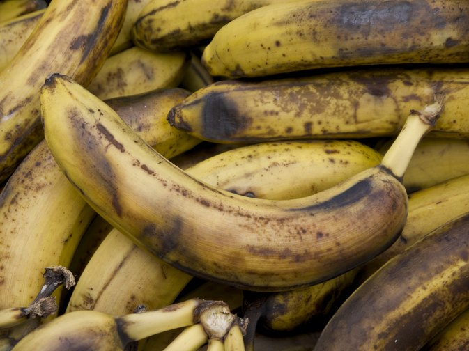 In fact, the resistant starch content of a fully ripe banana is less than 1%. Resistant starch is a type of indigestible carbohydrate that escapes digestion and functions like fiber in the body.