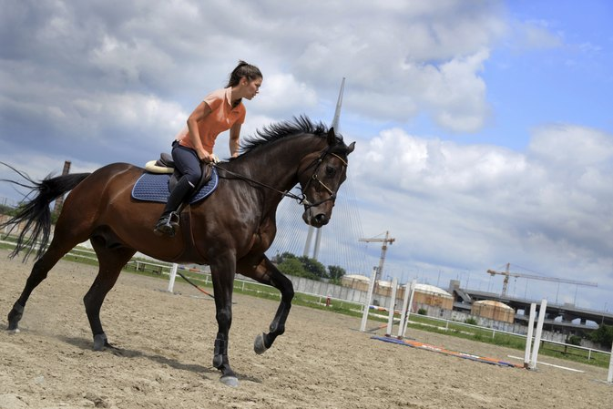 Fitness & Exercises for a Horse Rider
