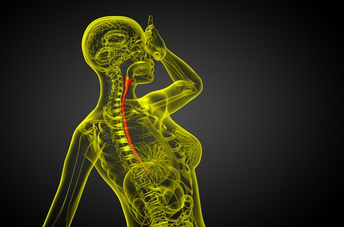 Diet for Cricopharyngeal Spasms