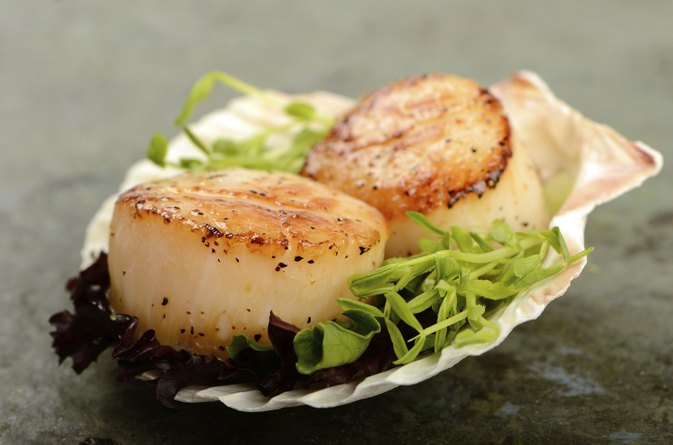 Scallops In The Water