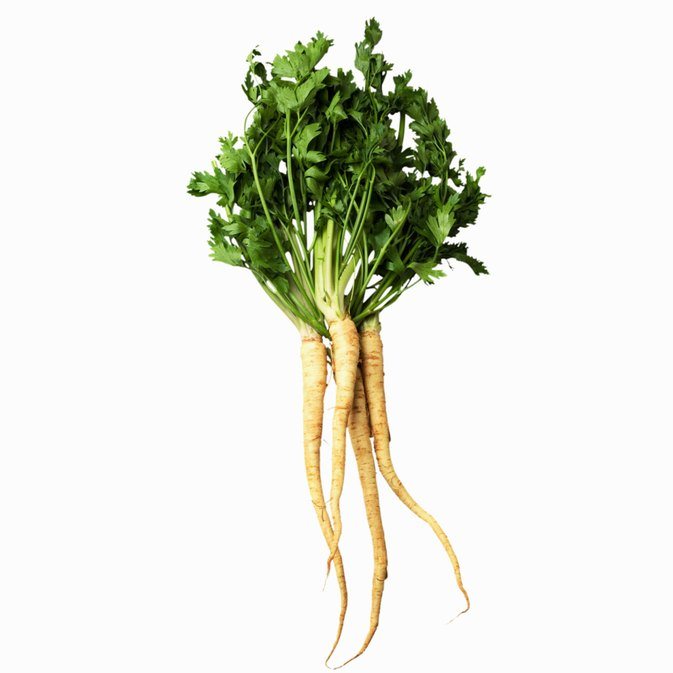 What Is the Difference Between Parsnips and Parsley Root?