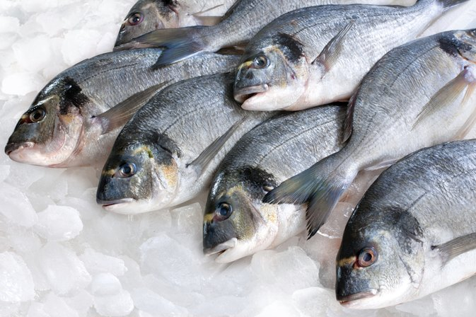 How Long Can You Keep Fresh Fish in the Fridge Before You Eat It?