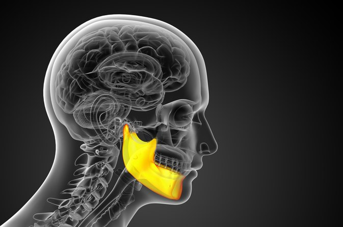 Bones In The Jaw Livestrong