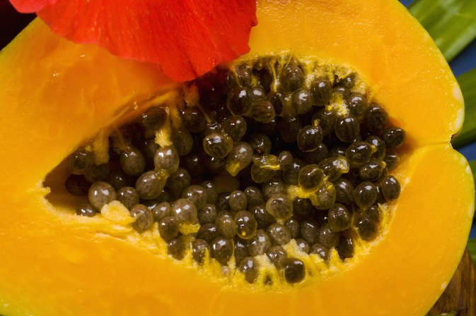 Benefits of Papaya Extract