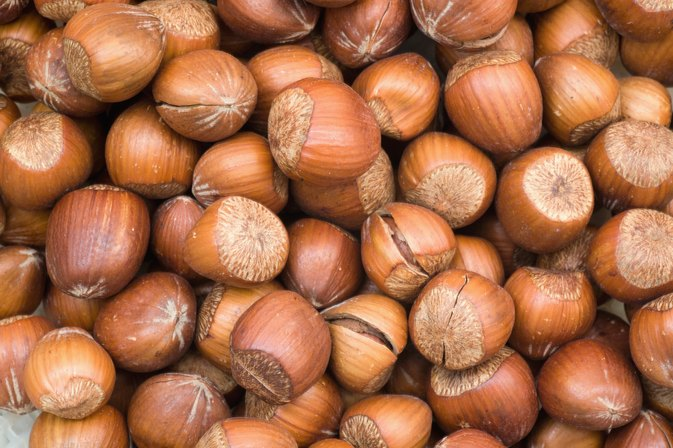 What Is the Serving Size for Hazelnuts?