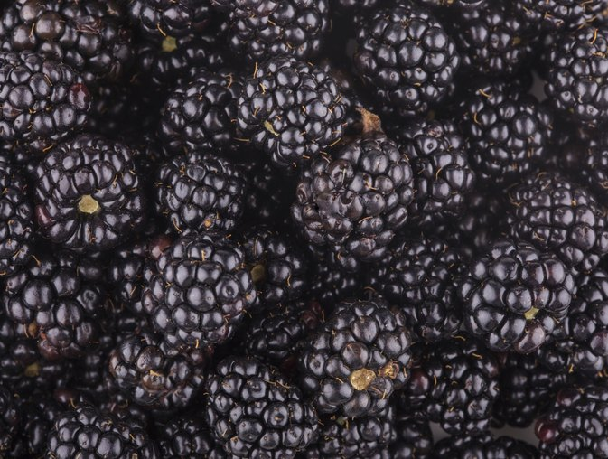 How Are Blackberries Good for You?