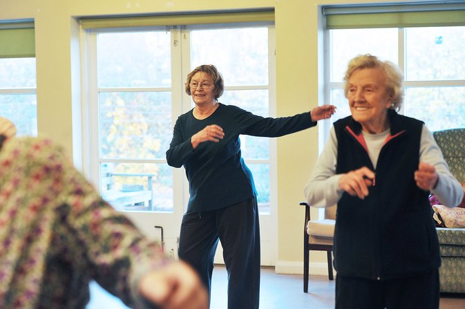elderly home exercise program pdf
