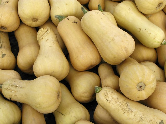 How Many Calories Are in Butternut Squash?