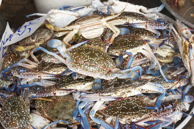 The Nutrition Value of Blue Crabs