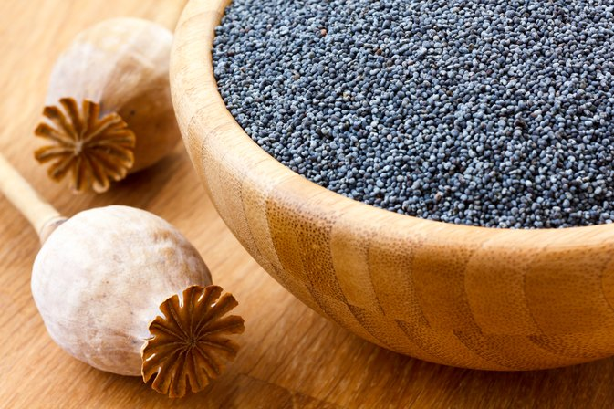 Are Poppy Seeds Safe for My Child?