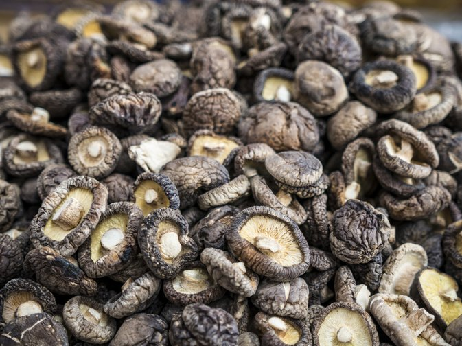 An Allergy to Shiitake Mushrooms