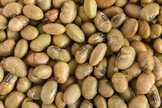 The Protein in Roasted Soy Nuts