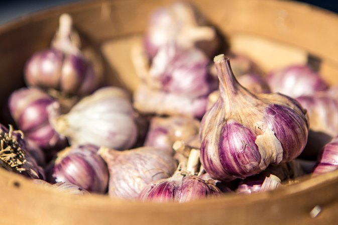 Allicin Garlic Side Effects