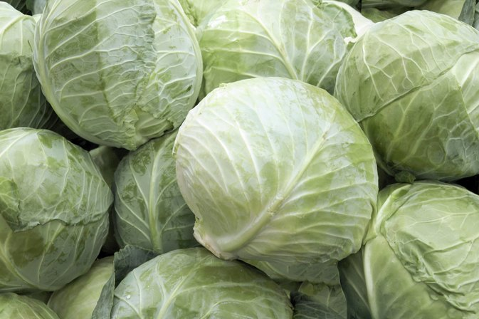 Can You Eat Cabbage When You're Pregnant?