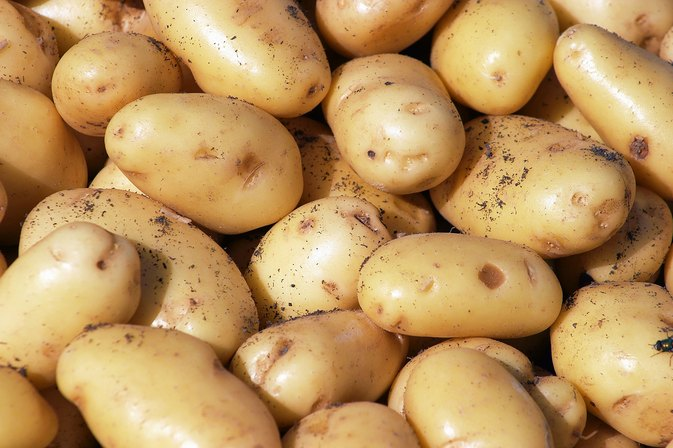 Ingredients to Avoid for Potato Intolerance