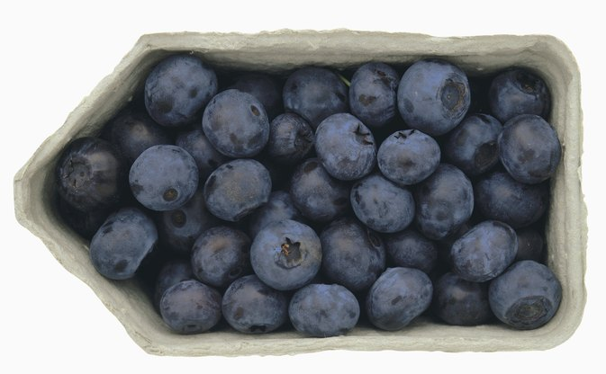 Side Effects of Bilberry Supplements