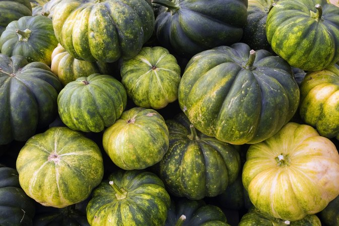 Nutrition in Calabaza Squash