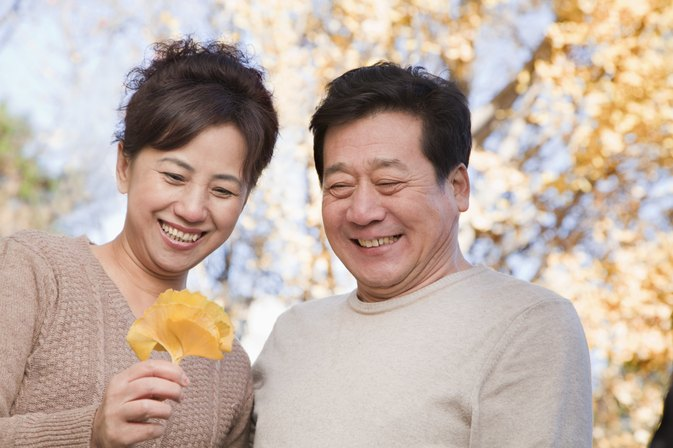 The Effect of Gingko Biloba on ADD/ADHD