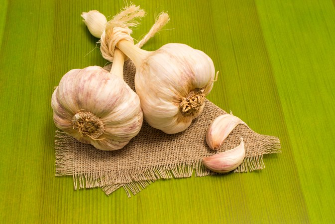 Can Garlic Cure Syphilis?