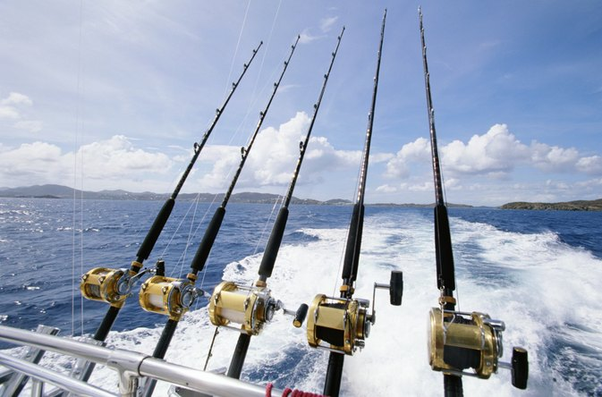 The Best Fishing Lines for Saltwater
