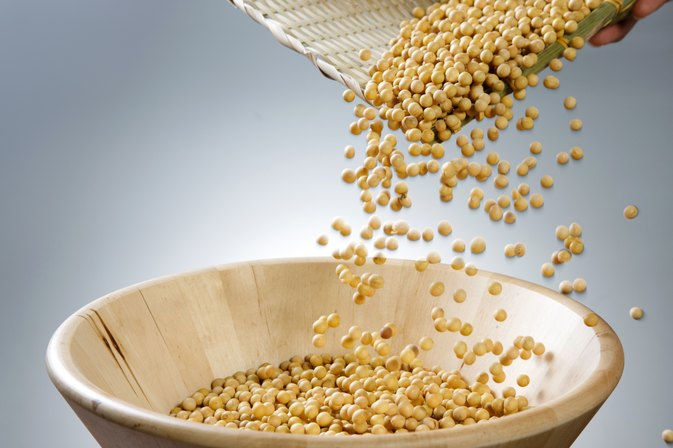 How Many Calories Are in Roasted Soy Nuts?