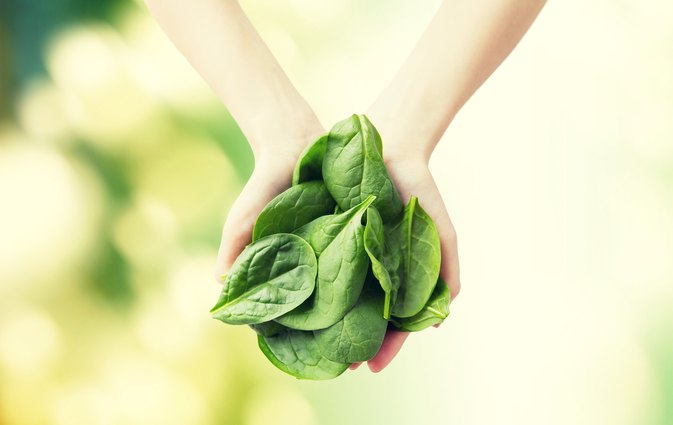 Can Eating Too Much Spinach Give You Kidney Stones?