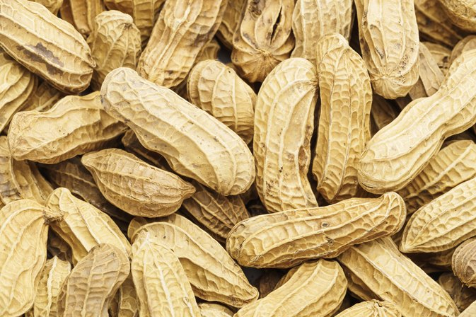 Do Peanuts Cause Weight Gain?