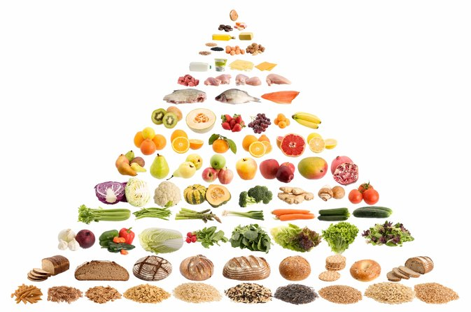 Facts About the Food Pyramid