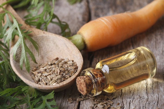 Carrot Seed Oil Risks
