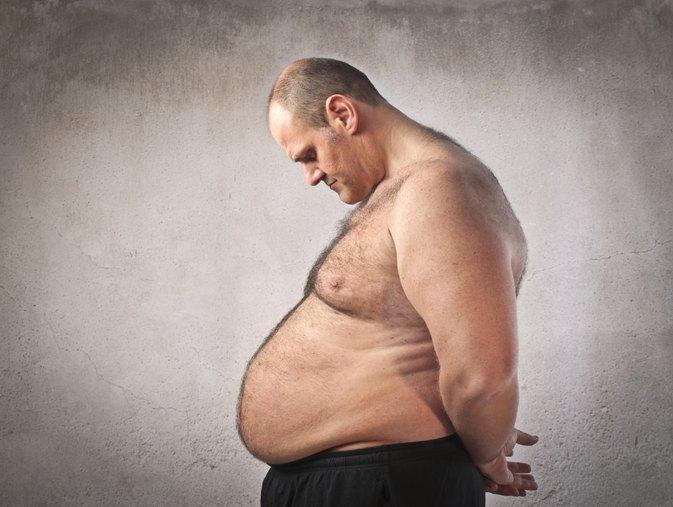 fat loss factor pdf free