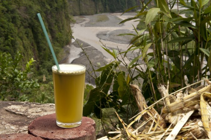 The Nutrition of Sugar Cane Juice